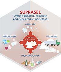 Suprasel offcers a dynamic food salt portfolio. Dedicated to the food industry.